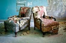 Wheelchair Asylum / NY